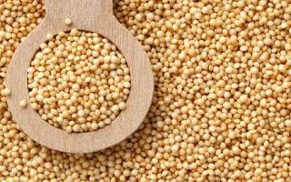 Польза и вред амарантового масла — эффективно ли оно на самом деле