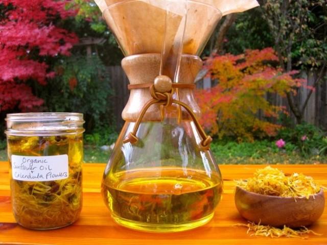 Всё о масле календулы — свойства и применение