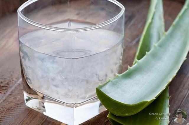 Маски от морщин для лица в домашних условиях из алоэ: рецепты, отзывы