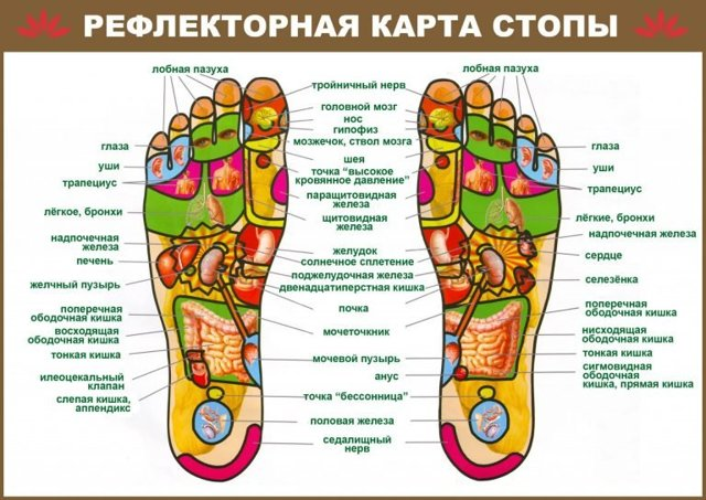 Массажер для ног Марутака: как работает, отзывы