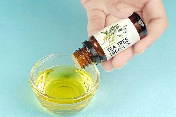 Масло чайного дерева для для ногтей: способы применения от грибка и в других целях, отзывы