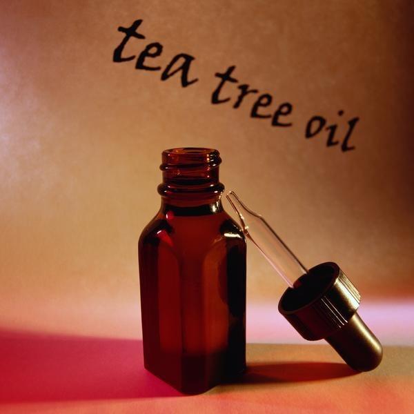 Масло чайного дерева для лица: применение, рецепты масок, отзывы