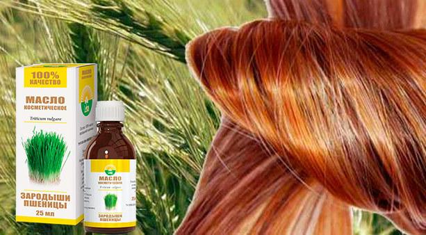 Масло зародышей пшеницы для волос: способы применения, польза, рецепты, отзывы