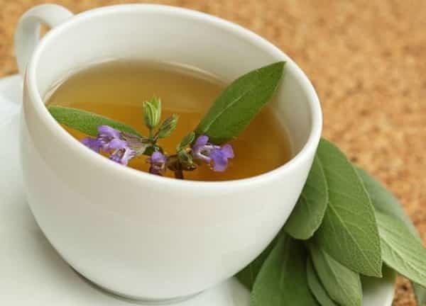 Оливковое масло для лица: рецепты масок с медом, желтком и другие виды, польза и вред, отзывы