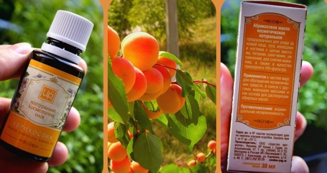 Абрикосовое масло: применение в косметологии, полезные свойства, прием внутрь, противопоказания