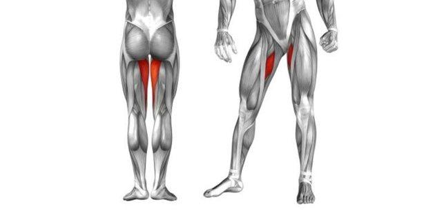 Как подтянуть ягодицы, внутреннюю часть бедра и ноги в домашних условиях быстро