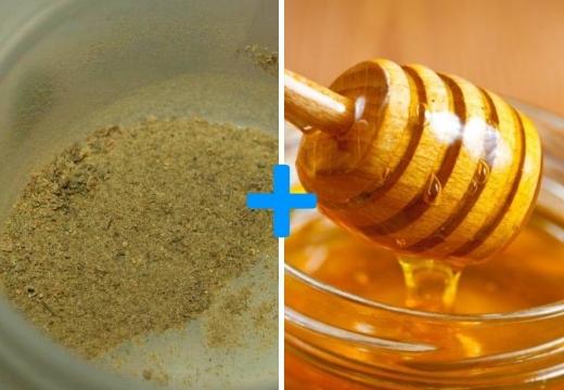Бадяга от целлюлита: свойства, особенности применения, фото до и после, отзывы