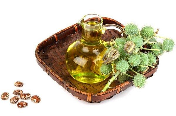 Касторовое масло для похудения: как принимать, рецепты, отзывы похудевших