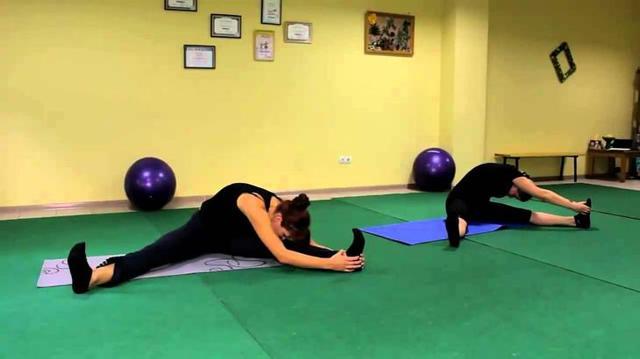 Упражнения для похудения ляшек в домашних условиях: видео, отзывы