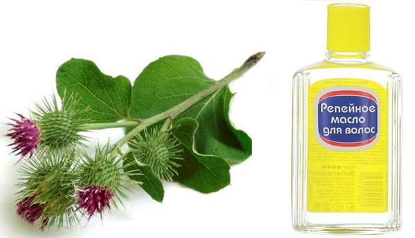 Репейное масло от перхоти: помогает ли, отзывы, рецепты применения