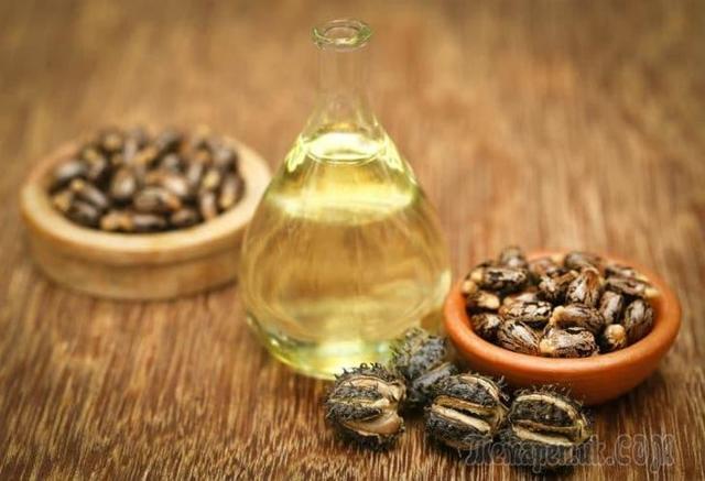 Применение касторового масла — свойства + лучшие рецепты