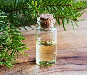 Секреты пихтового масла — лечебные свойства и противопоказания
