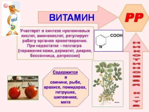 Никотиновая кислота от целлюлита: свойства, применение, фото до и после, отзывы