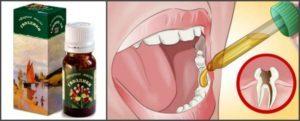 Масло гвоздики: свойства и применение для волос, лица, от зубной боли и в других целях, отзывы