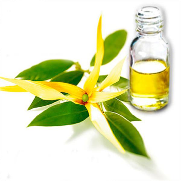 Эфирное масло иланг-иланга: 7 главных свойств + применение