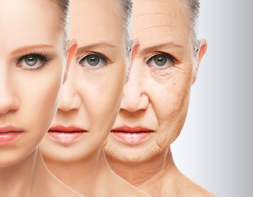 Кремы от морщин на лбу: как выбрать лучший для разных возрастов от 30 лет, отзывы