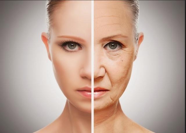 Крем Геронтол от морщин: состав, плюсы и минусы, отзывы косметологов